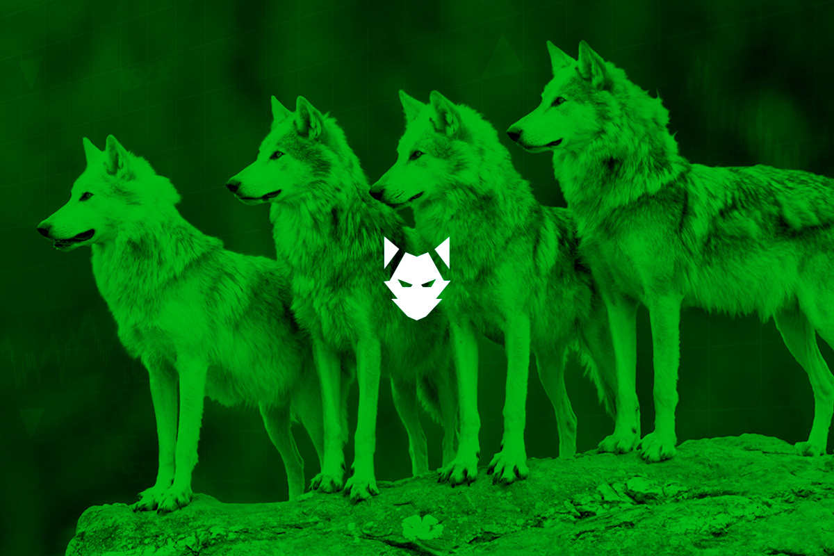Wolf forex